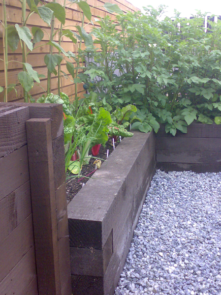 Our home allotment has raised beds and a home made compost bin to match