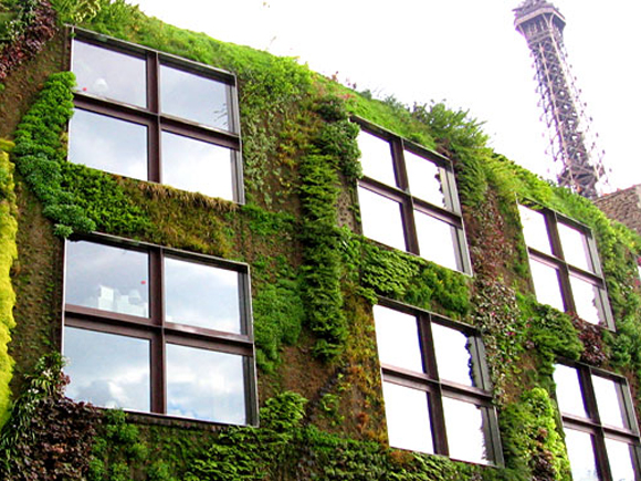 The Patrick Blanc vertical garden can be implemented anywhere