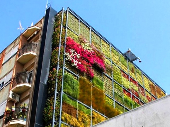 Green walls don't have to be just green!