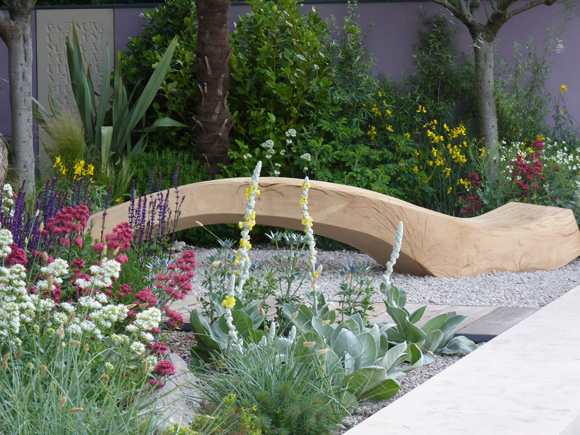 The driftwood bench in the Cancer Research garden