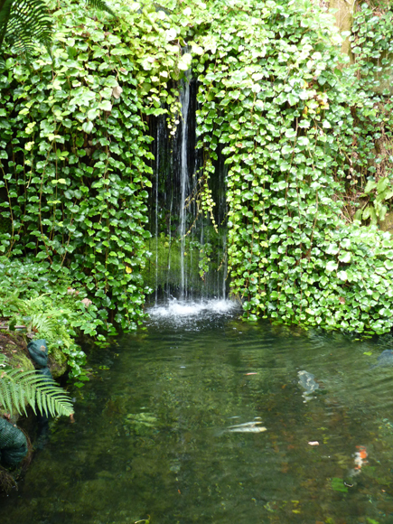 The water garden was wonderful to see