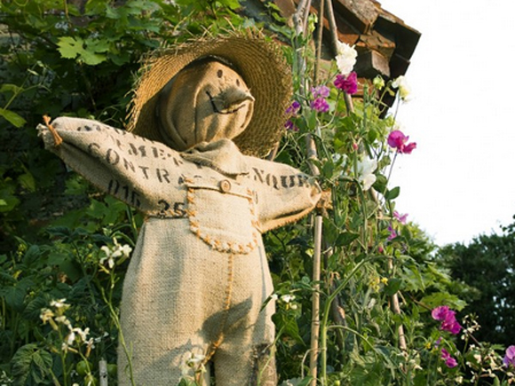 Make your own scarecrow
