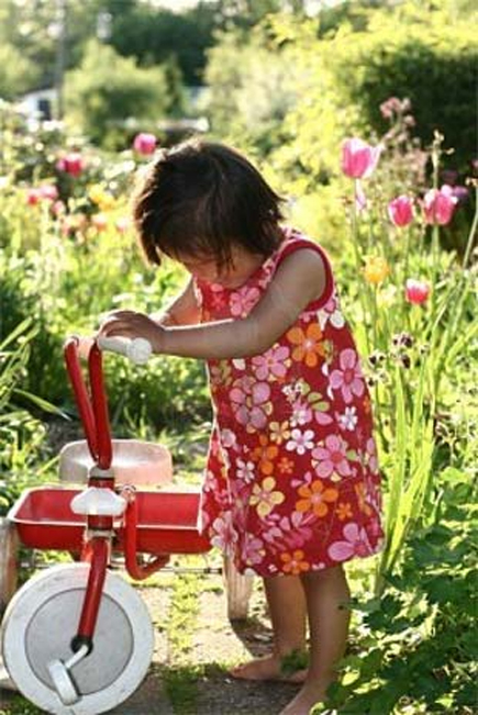 Creating a child friendly garden for the whole family to enjoy