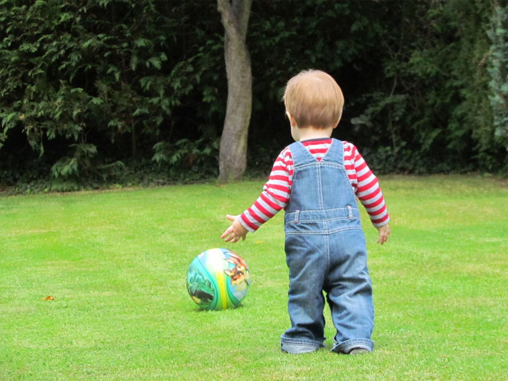 Make your garden safe for your toddler