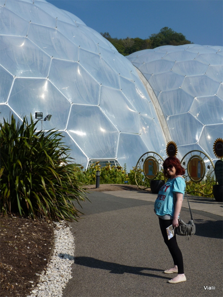 A Biodome...in front of Eden's Biodomes
