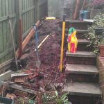 Problem corner: a sloping area with lots of roots and old bricks