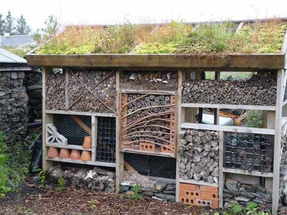 A bug hotel on Seil Island with a green roof
