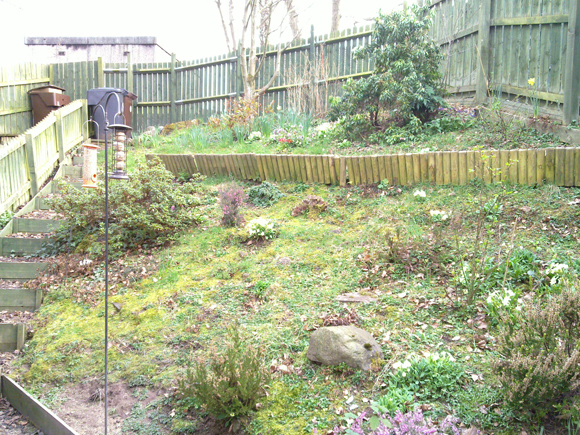 Before: the garden was inaccessible and overgrown
