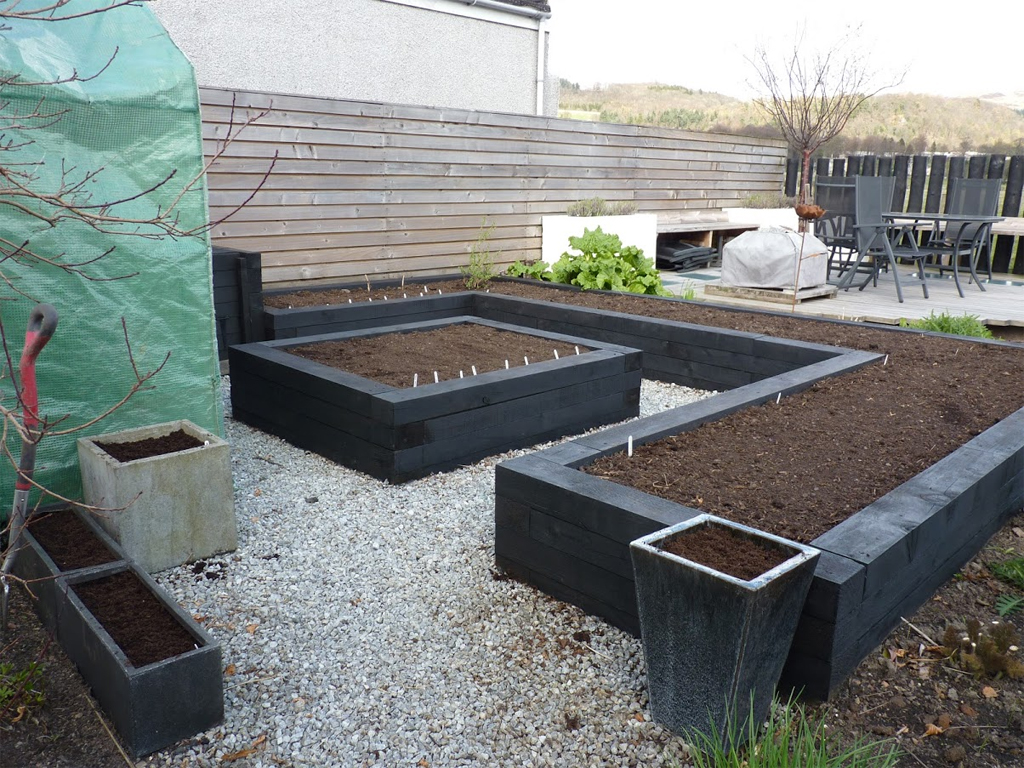 Our newly sown veg beds