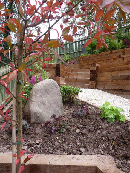 Here, both the feature tree, Euonymus europaeus, and the unearthed standing stone are focal points in the garden