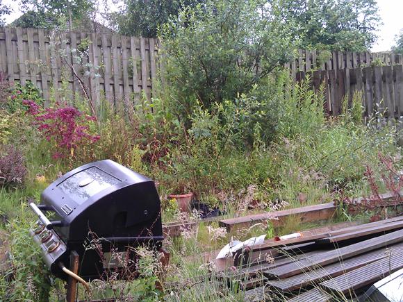 An overgrown, sloped garden