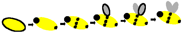 Make a bumble bee from finger prints