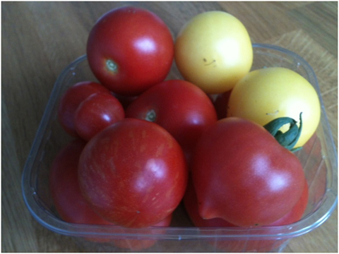 Top Tip for Tasty Tomatoes Clockwise from top left: Ailsa Craig, 2 Golden Sunrises, Roma Plum,  Tigerella, Gardener's Delight cherry. Centre is Ailsa Craig.