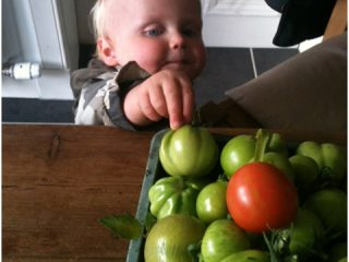 I just need to give our home grown tomatoes a bit of a taste test first!