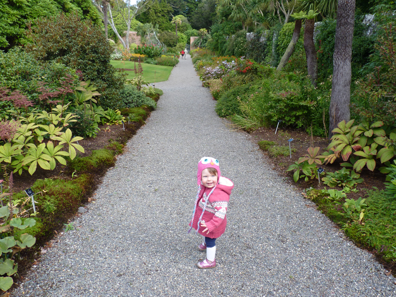 Wow - what a lovely long path round the Walled Garden to explore. This part is packed with all sorts of pretty flowers.
