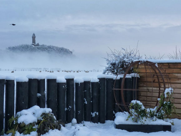 Feature fences and sculpture can provide important focal points in winter