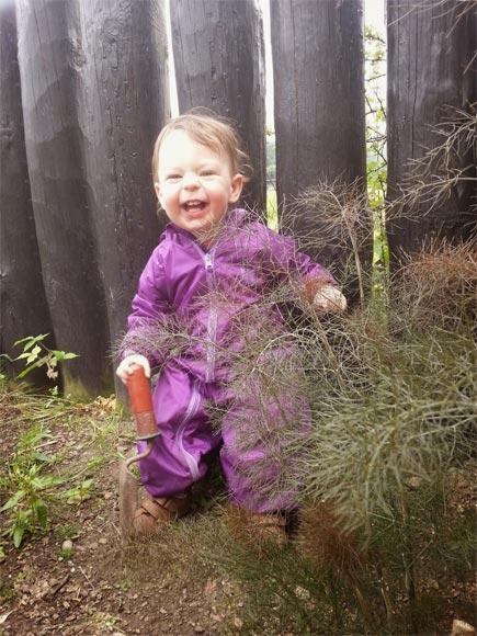 Lulu's Garden Blog