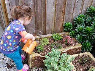 Keep active and learn new things in the garden