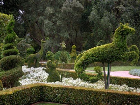 The Lotusland Topiary Garden