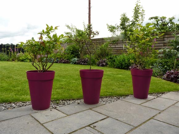 New pink pots add a splash of colour to the patio