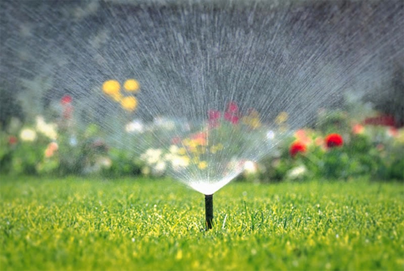Be sure to keep your new lawn well watered