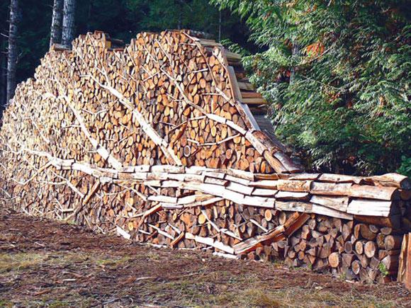 Stunning tree log pile art