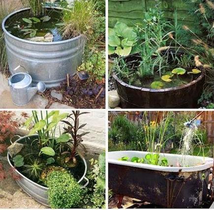 Inspiration for ponds