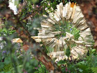 Jo Thompson's garden
