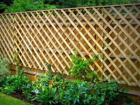 A trellis fence