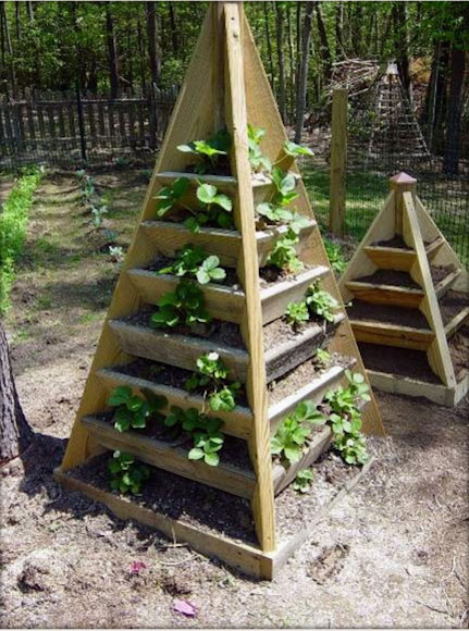 The pyramid planter