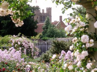 Coughton Court's Rose Labyrinth