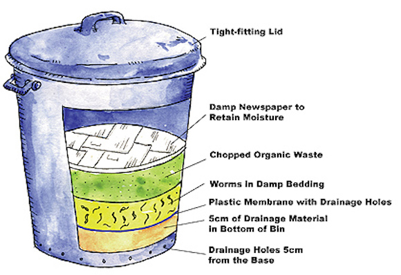 You can buy composting wormeries or make one from an old bin following these instructions