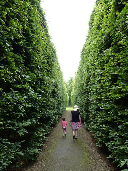 Off exploring the impressive hedges at Levens Hall