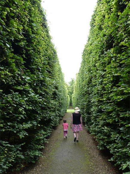 Off exploring the impressive hedges at Levens Hall