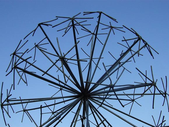 Allium seedhead sculpture