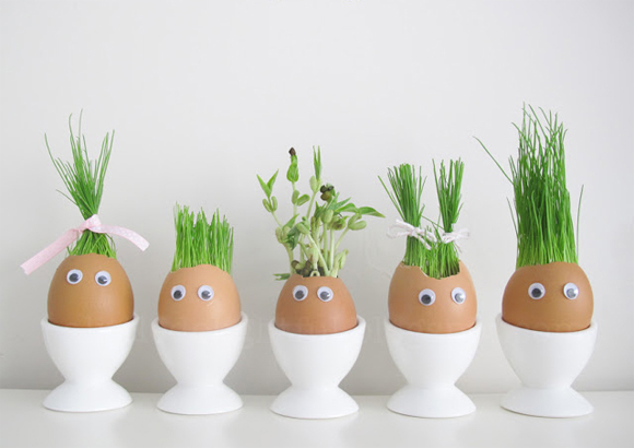 These egg heads know how to grow seeds