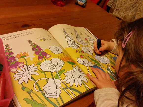 Lots of pretty flowers to colour