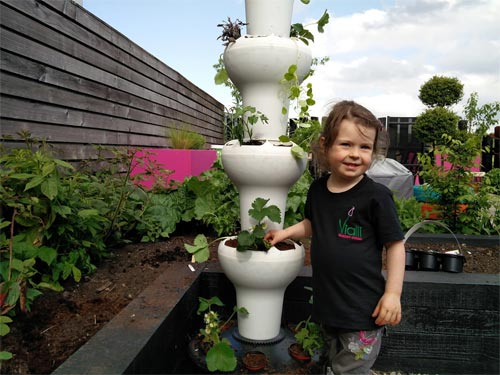 Our Foody, all planted up and looking great!