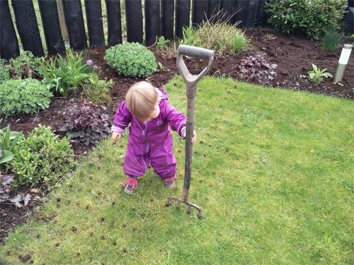 Tilda is an expert at aerating lawns!