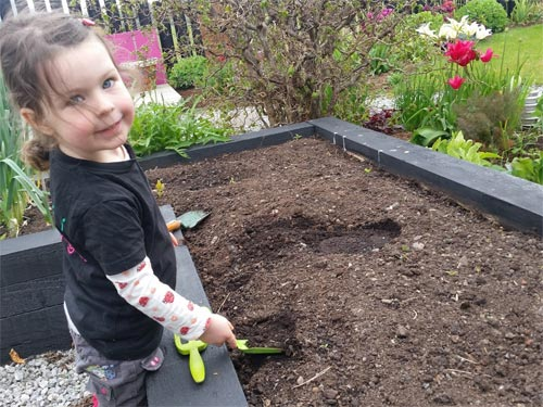 Weed your veg beds before you start sowing your seeds