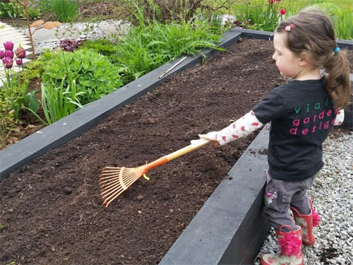 Rake out your veg beds and make the nice and even