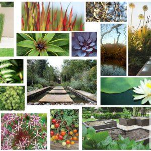 The garden design moodboard