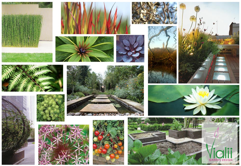 Garden Design Mood Board process