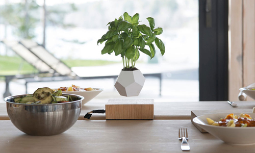 LYFE planter