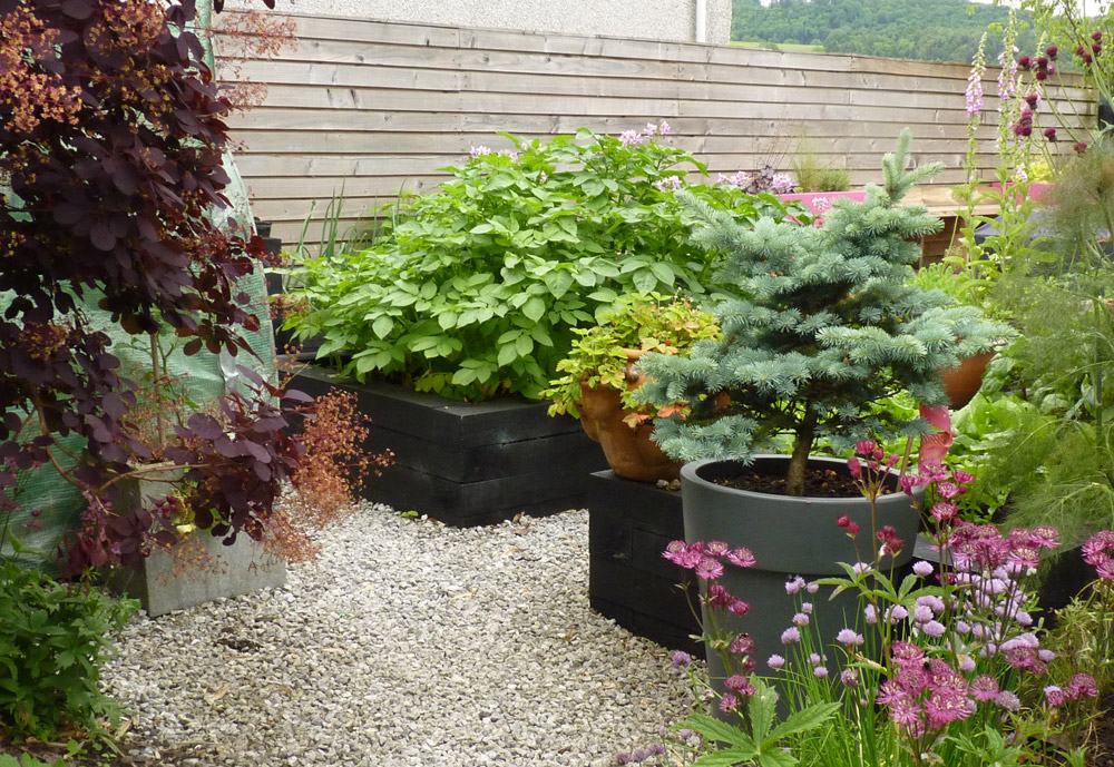 We love our raised beds here in our own garden