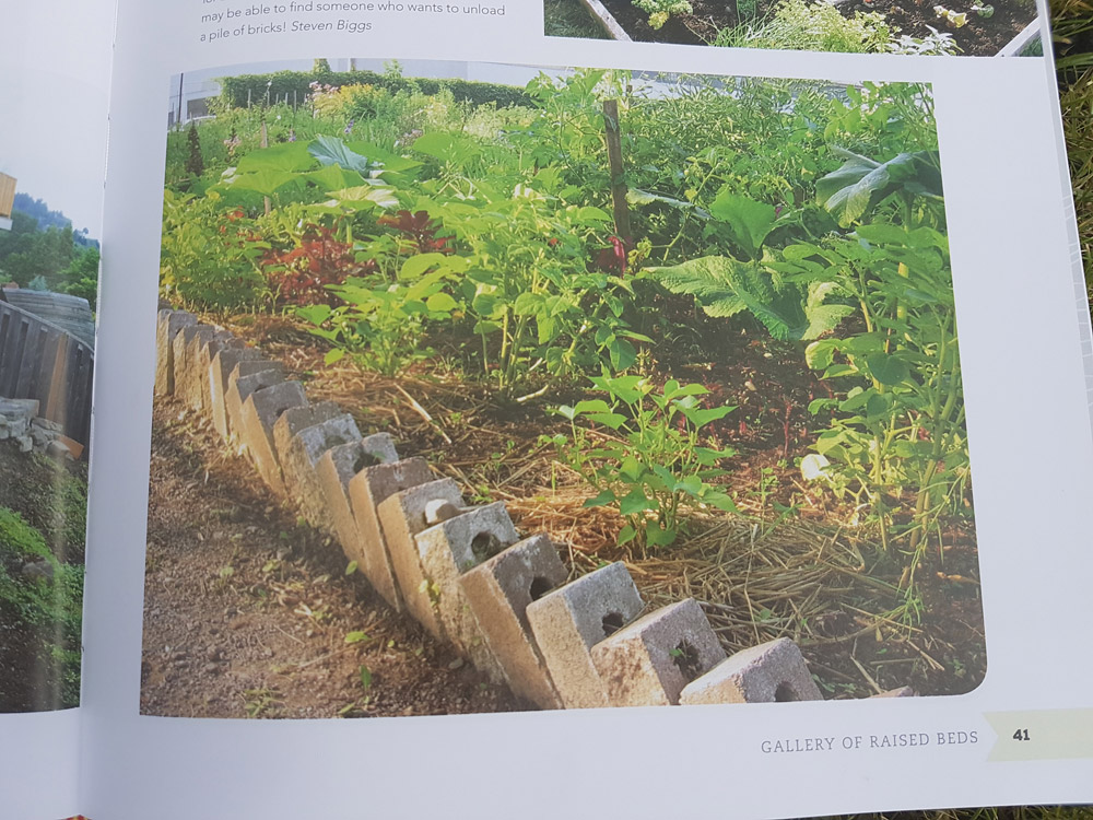Raised bed made from old bricks