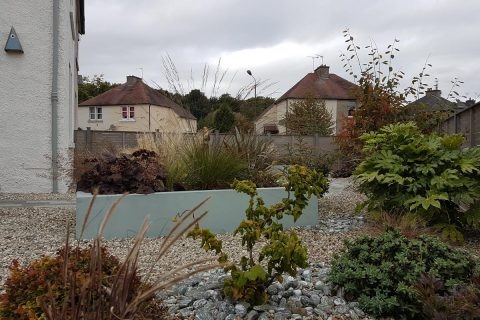 Planting in gravel and raised beds soften the look