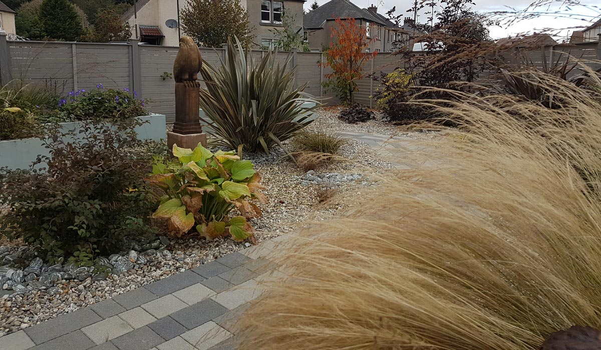 Contemporary front garden in Stirling