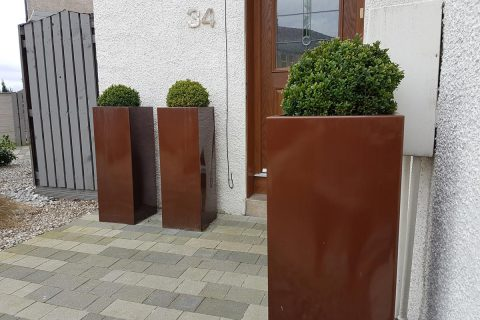 Box balls in tall planters give a contemporary feel