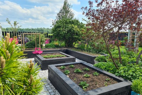 Our veg beds are perfect for growing our own produce